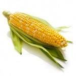 Food corn