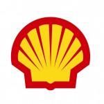 Company Shell