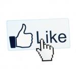 Company Facebook like small