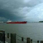 shipping stocks