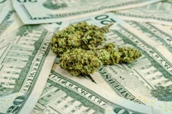 How to Invest in Pot Stocks Right Now