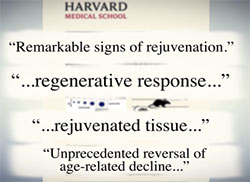 rejuvenated tissue