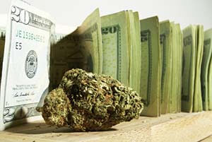 What Investors Need to Know About Finding the Best Pot Penny Stocks