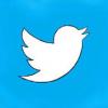 Twitter stock price today