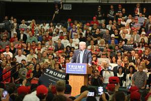 Donald Trump's deportation plan
