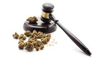Behind the Initiative for Marijuana Legalization in California & Prop 64