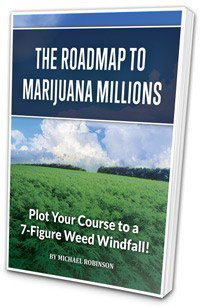 The-Roadmap-to-Marijuana-Millions-NVX-weed