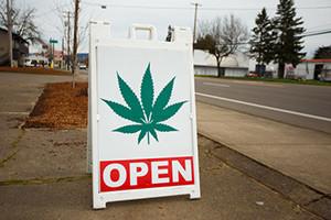 investing in marijuana stocks