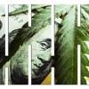 marijuana investing in 2017