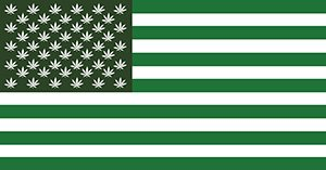 a brief history of the use of marijuana and the legalization argument A brief history of marijuana law in  campaigns in several states to legalize its recreational use  path to marijuana legalization comes with.