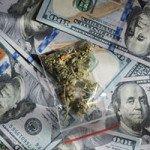 top marijuana companies