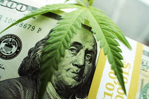 marijuana stocks with dividends