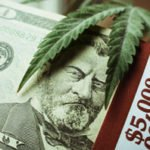 pot stock investments