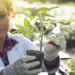 Biotech stock portfolio