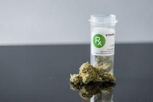 marijuana penny stocks to watch in October 2017