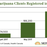 Canadian marijuana news