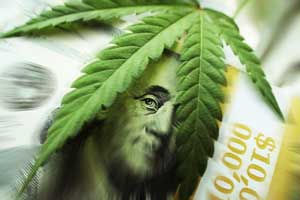 pot penny stock news