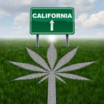 California's Legal Cannabis