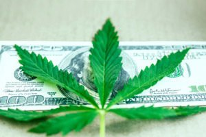 This Is an Unprecedented Opportunity for Investing in Marijuana Stocks