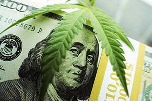 Canadian marijuana companies