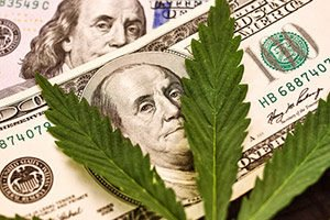 Cannabis IPOs