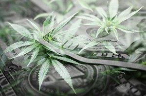 marijuana mergers and acquisitions