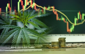 A marijuana plant imposed on a computer screen with a line chart and stacks of coins behind it.