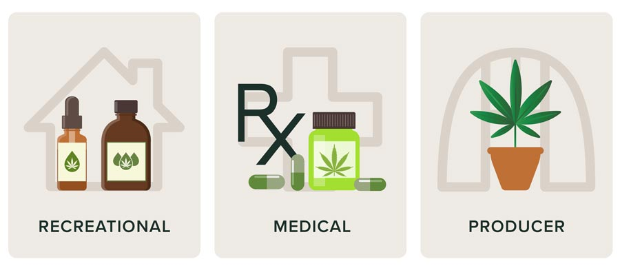 A marijuana tincture, prescription, and plant representing the three sectors of the cannabis industry: recreational, medical, and marijuana producers