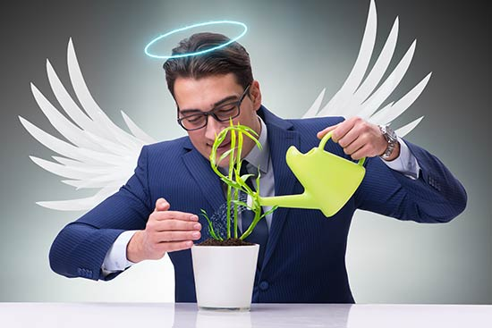 Man in a business suit with angel wings watering a pot with a dollar sign growing out of it.