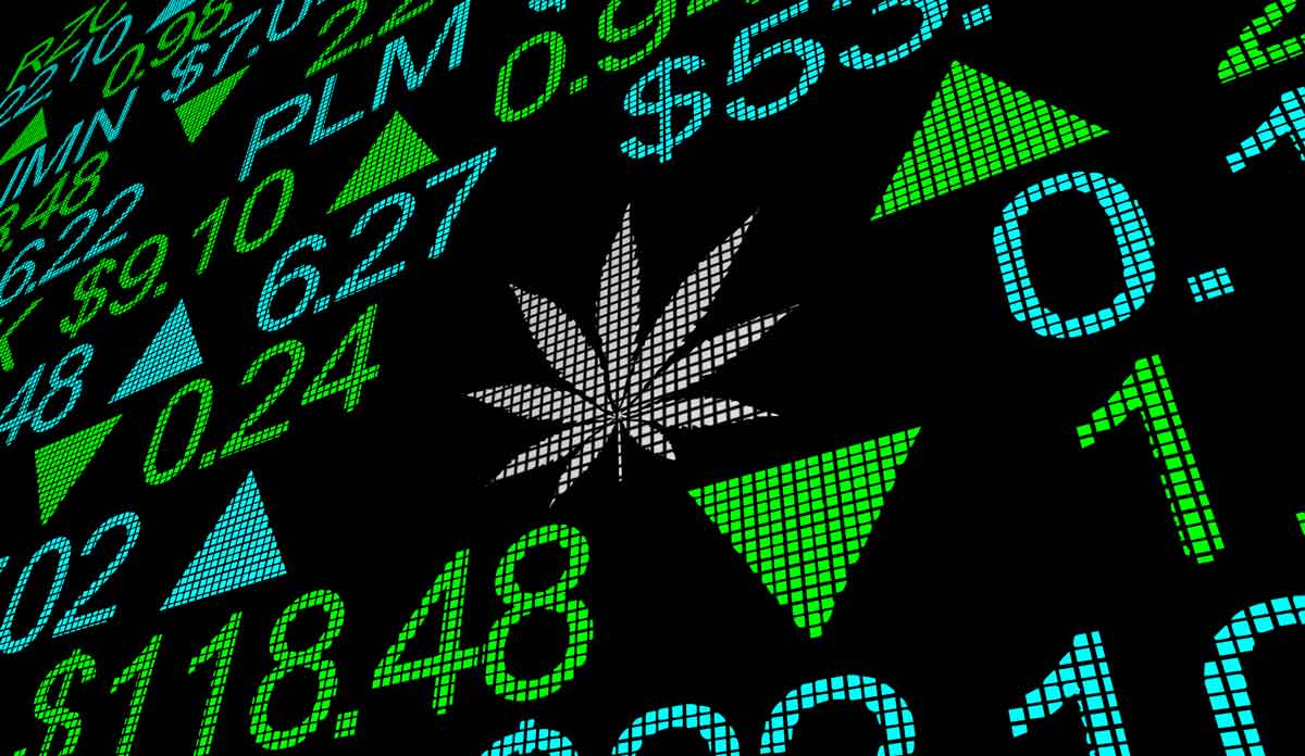 This Cannabis Play Delivered 344% Profits for Starters