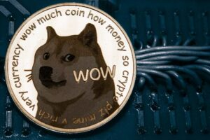 Why You Absolutely Should Not Buy Dogecoin Right Now
