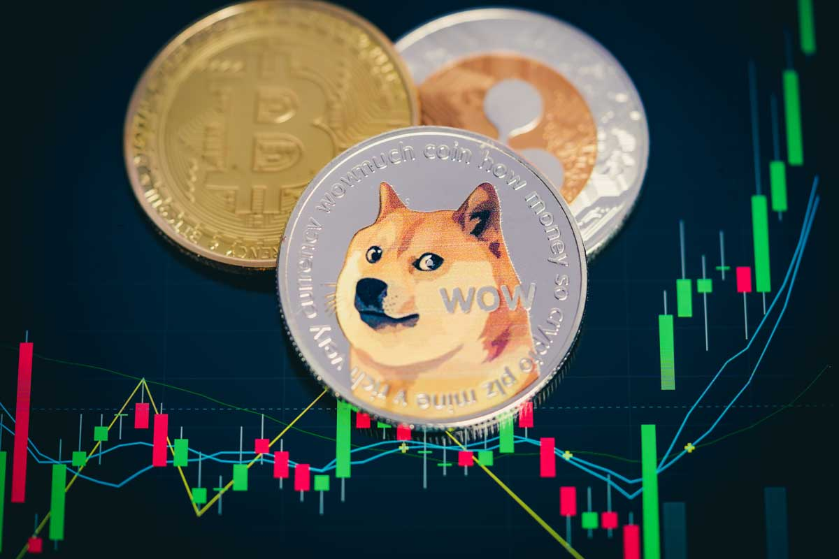 Dogecoin Price / Dogecoin Price Surges Following Its ...